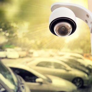security camera plantation
